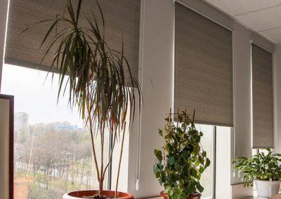 рулонные шторы - вариант 1